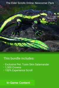 خرید Newcomer Pack The Elder Scrolls Online